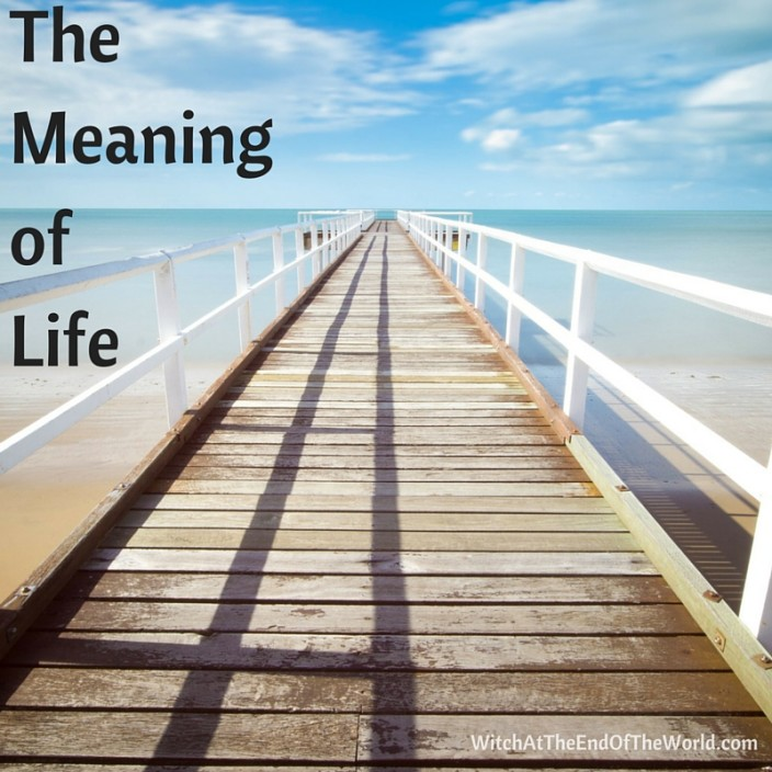 The MeaningofLife
